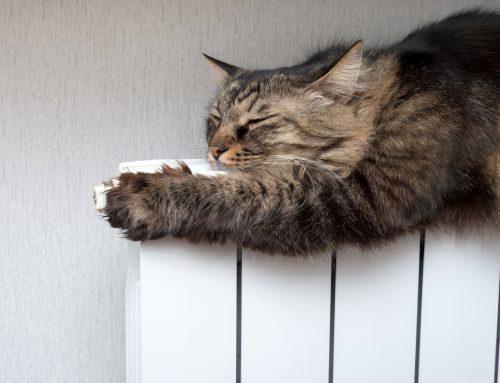Come verificare l'efficienza dell'impianto termico