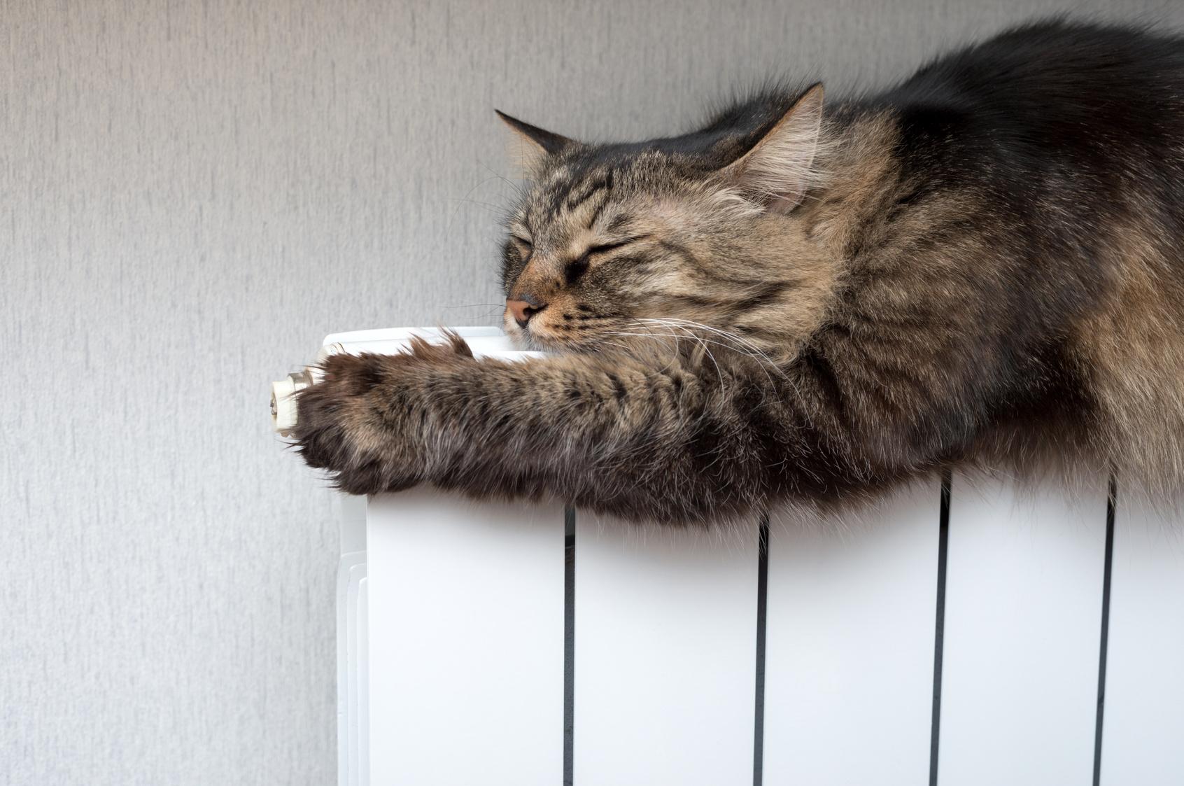 efficienza impianto termico